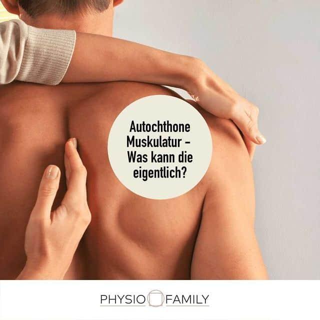 autochthone muskulatur